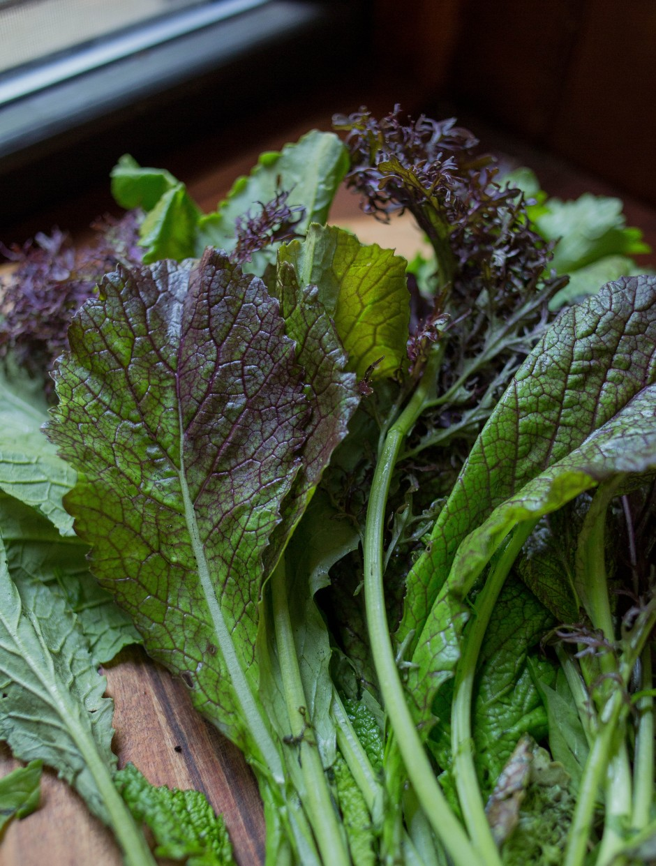 mustard greens salad + lime and za'atar dressing   punctuated with food